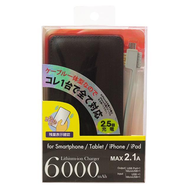 ケーブル収納リチウム充電器6000mh